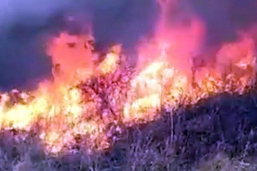 Bomberos combaten un incendio en el norte de la provincia de San Luis