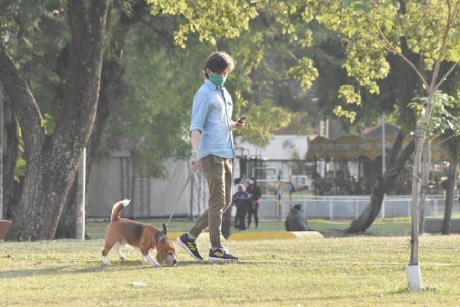 Los perros ya no podrán pasear por espacios públicos sin correa