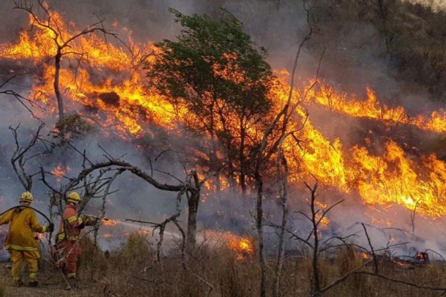 Incendios forestales: focos activos en cinco provincias