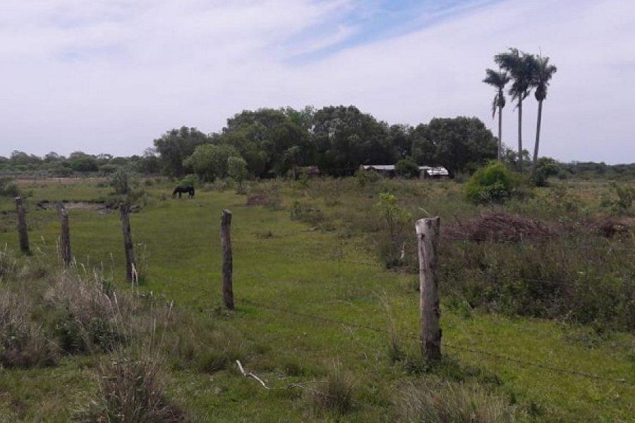 El ICAA realizó inspecciones de tierras fiscales en Isla Apipé