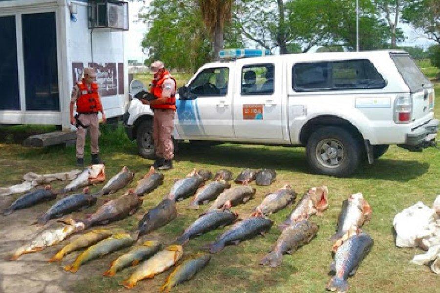Prefectura incautó más de 600 kilos de pescado en Lavalle