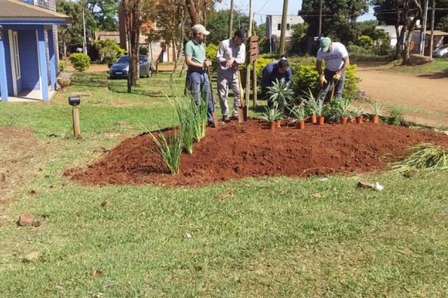 Plantaron 20 ejemplares de diversas especies en un boulevard de Virasoro