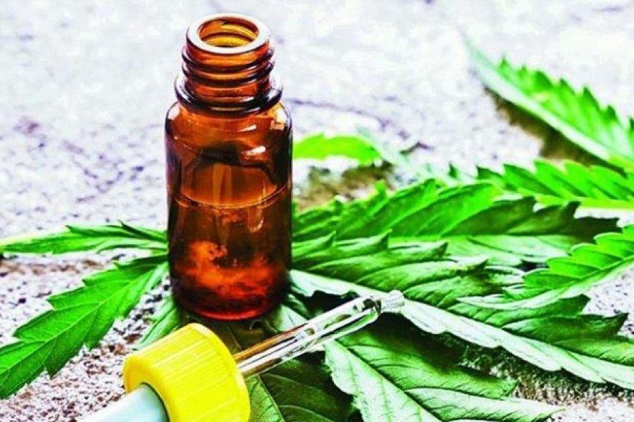 La Pastoral de Adicciones lomense advierte sobre los riesgos del cultivo de cannabis