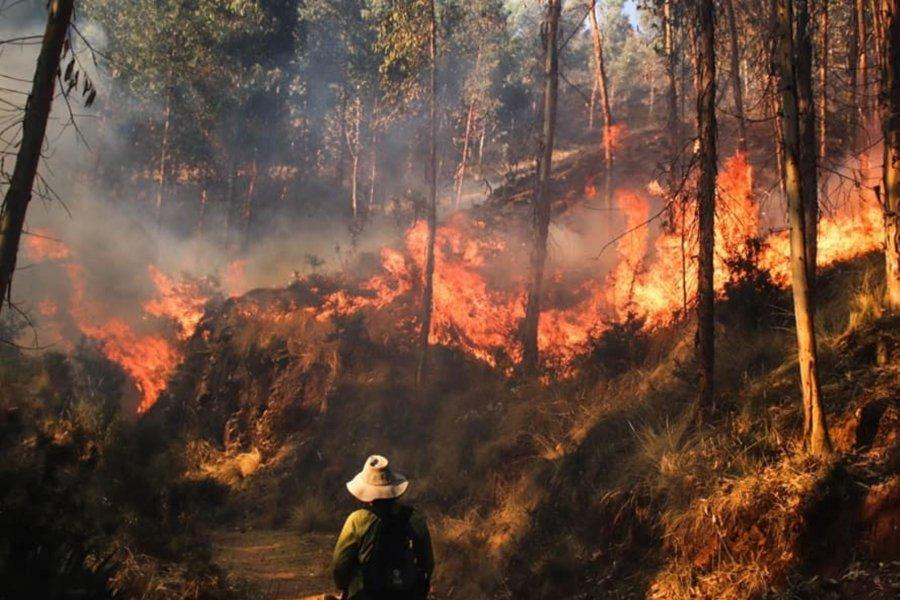 Se aprobó el proyecto que prohíbe la venta de terrenos afectados por incendios