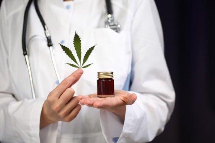 Cannabis: el Senado de México aprobó la legalización para uso medicinal y recreativo