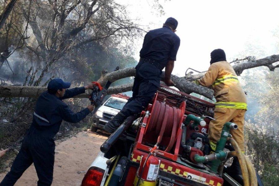 Un árbol cayó sobre el móvil de Bomberos de Mburucuyá