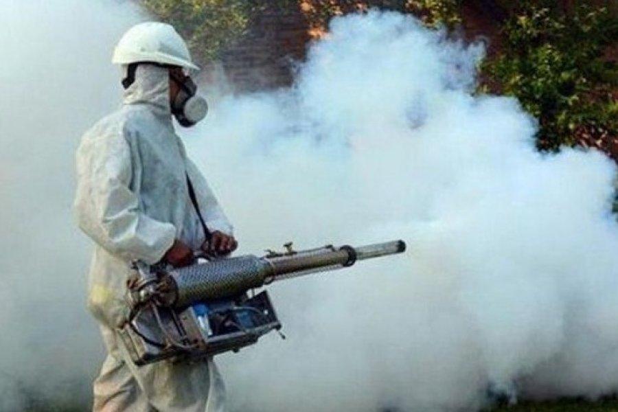 Advierten sobre la falta de fumigación en los barrios de Capital