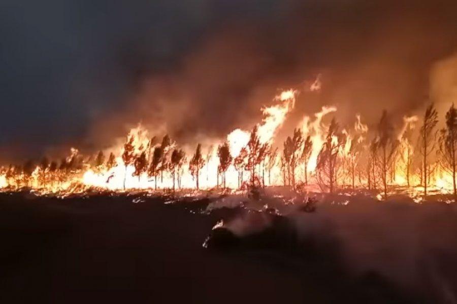 Impactantes imágenes del fuego que no da tregua en Virasoro