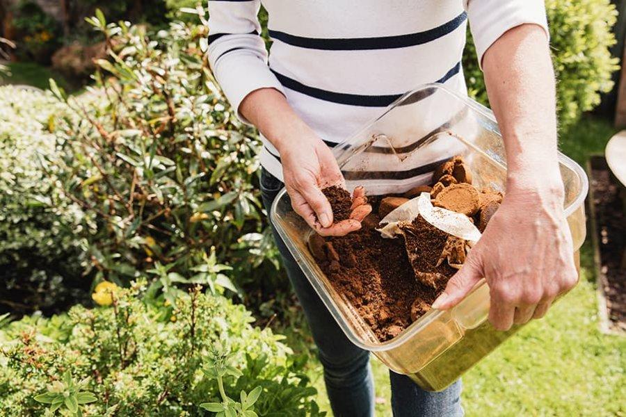Compostera doméstica: ¿para qué sirve y cómo hacerla?