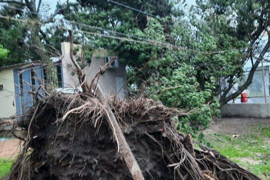 Un tornado azotó Empedrado y hay decenas de familias evacuadas