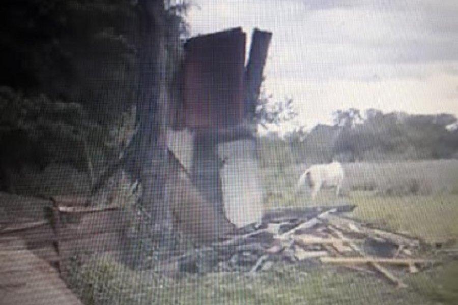 Denuncian a funcionarios comunales por destrucción de viviendas en Corrientes
