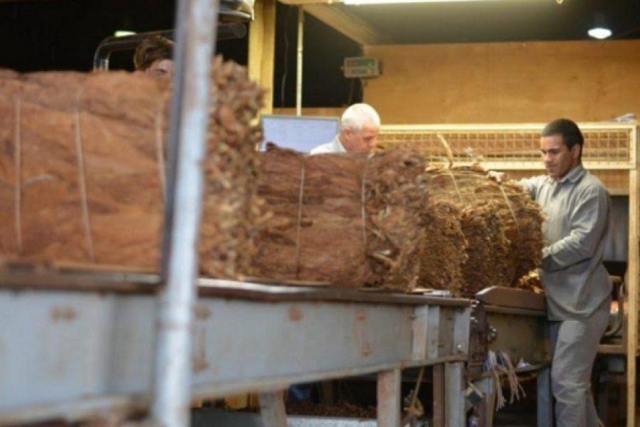 Lo adeudado a tabacaleros de Goya supera los $350 millones