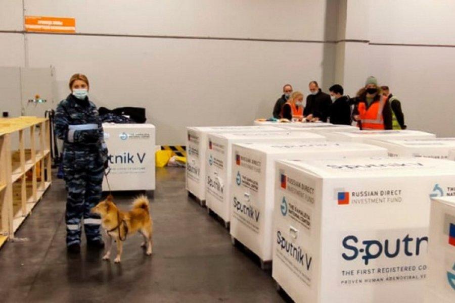 Desde Rusia, anuncian planes para fabricar la vacuna Sputnik V en Argentina