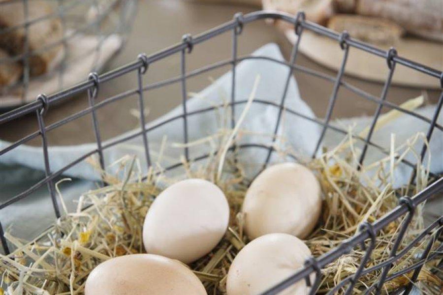 ¿Hay que lavar los huevos antes de guardarlos o usarlos?