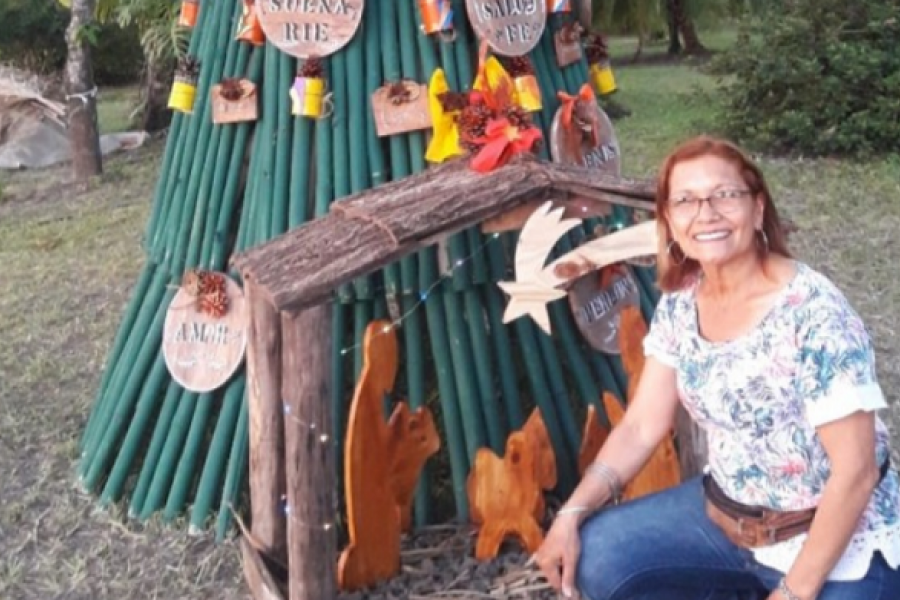 Árbol de Navidad de tacuara adorna la novel reserva natural del barrio Doctor Montaña