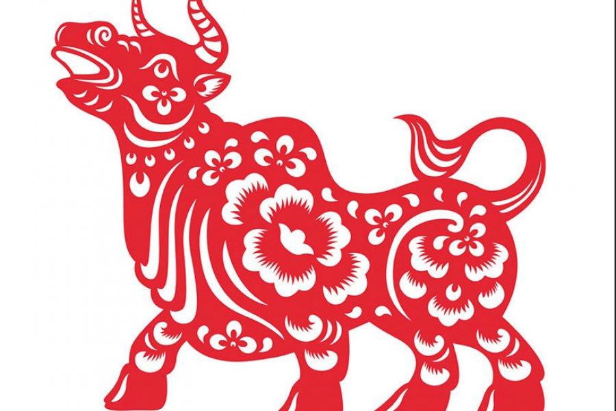 Horóscopo chino 2021: consejos y predicciones detalladas para cada signo en el año del Búfalo de Metal