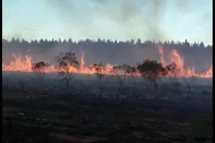 Bomberos trabajan para sofocar las llamas en Virasoro