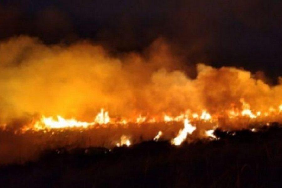 Fue controlado el incendio forestal en zona de la Ruta 120