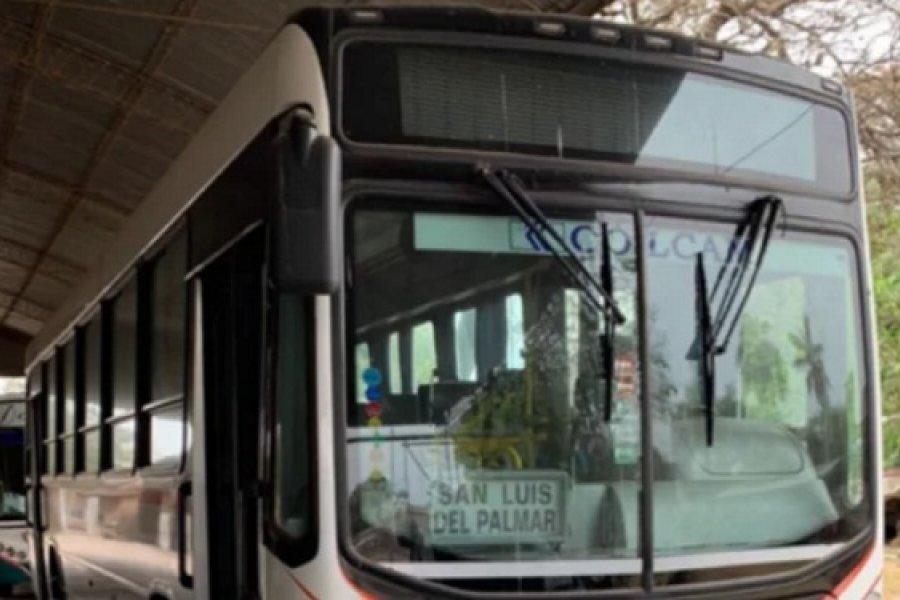 San Luis del Palmar: Regresa hoy el servicio de transporte