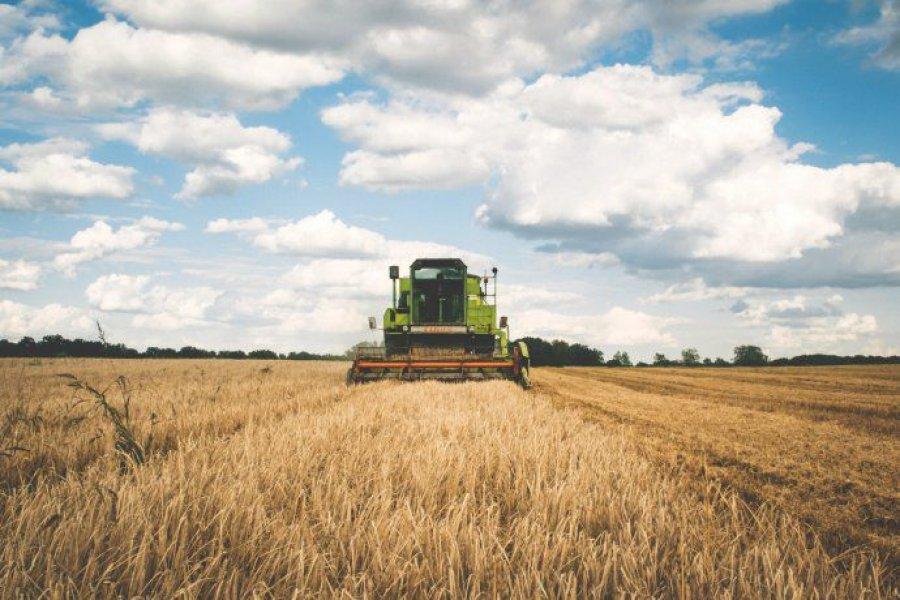 Pese a apertura parcial de exportaciones de maíz, el campo mantendrá el paro de 72 horas