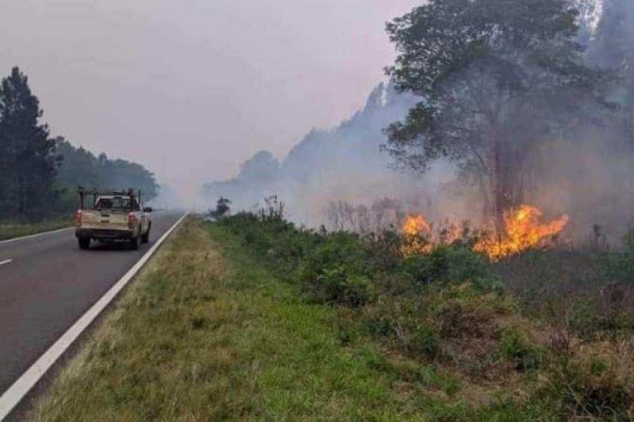 Incendio en aserradero puso en alerta a toda la comunidad