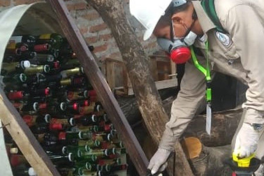 Detectaron casos de Dengue en cinco barrios de Capital