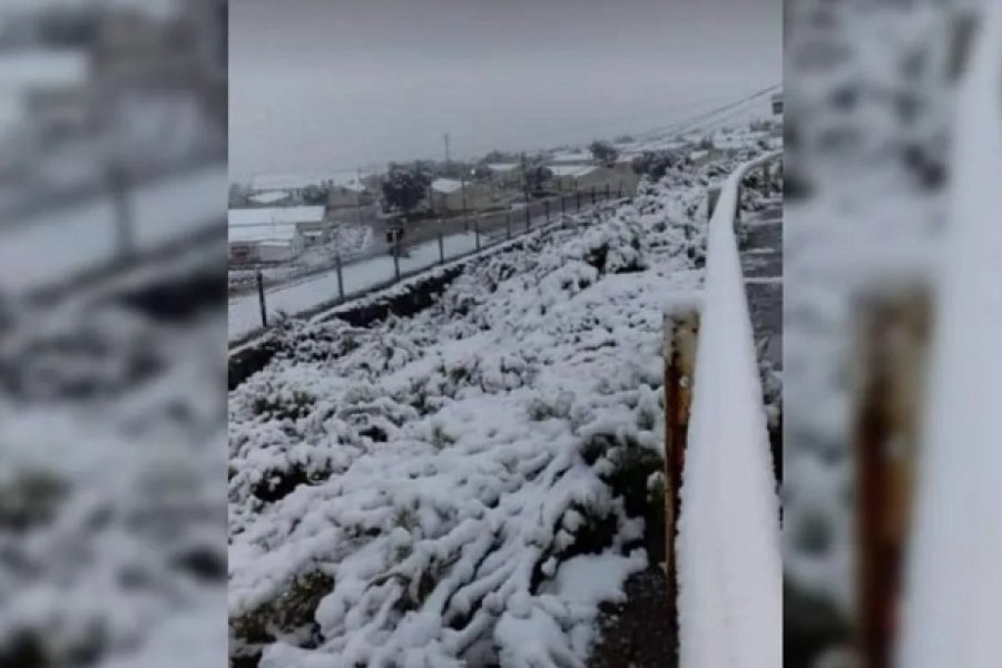 Nieve en pleno verano: La puna de Jujuy se tiñó de blanco y dejó un paisaje único