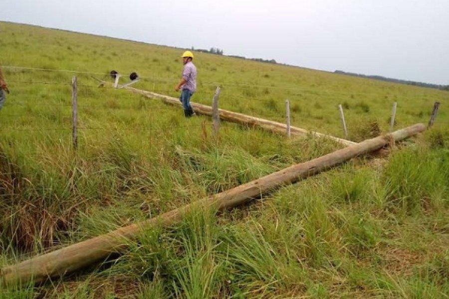 Corrientes: El Interior y la Capital sin luz por las lluvias
