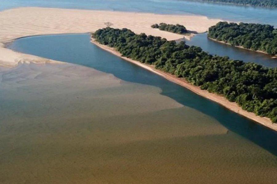Pescadores deportivos denuncian descontrol en el río Paraná