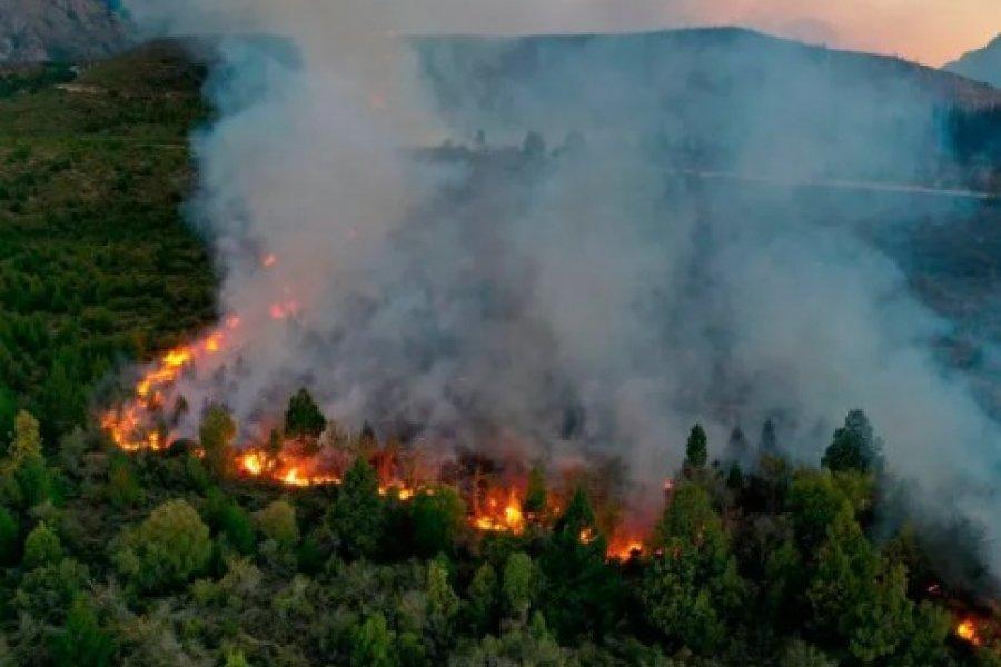 Incendio sin control en Río Negro: Al menos 6.500 hectáreas afectadas