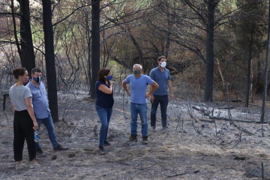 Tensión política entre Nación y Río Negro por incendio en El Bolsón