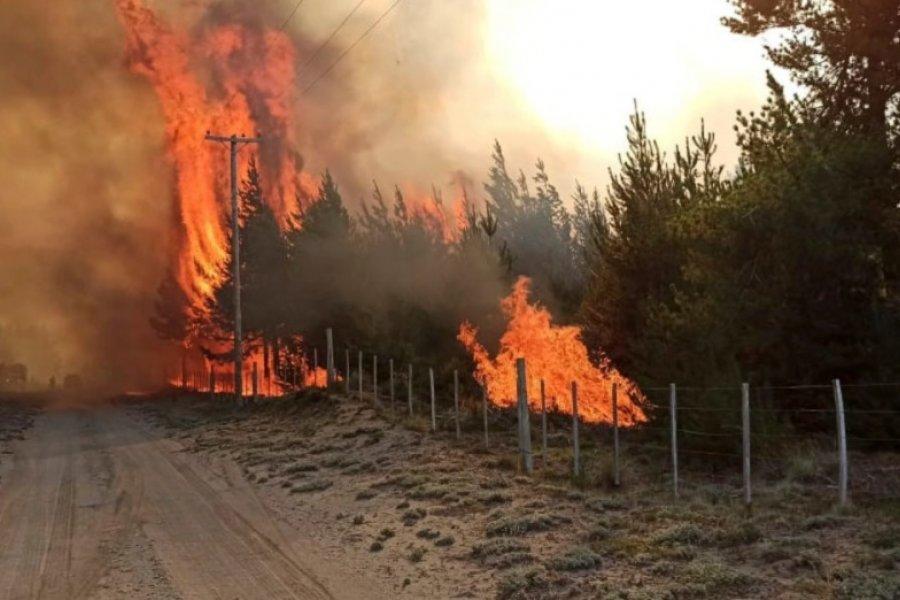 El Bolsón: tratan de evitar que el fuego avance hacia una comunidad mapuche