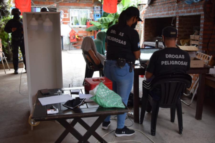 Allanamientos simultáneos: La Policía desmanteló plantación de marihuana