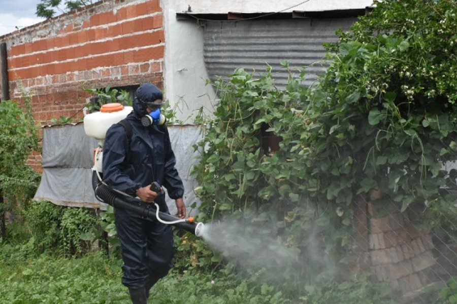 Se realizó un operativo de descacharrado y fumigación en Capital