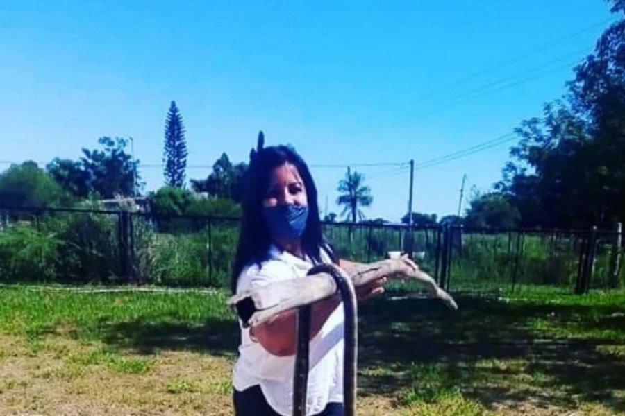 Exhibió una serpiente muerta en una escuela y la repudiaron