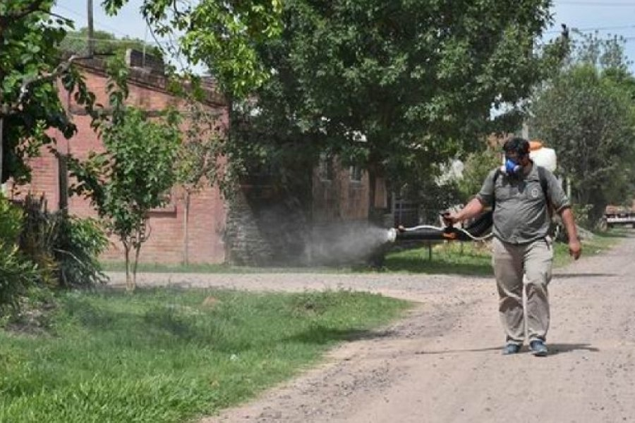 Hoy, se realizará el descacharrado y la fumigación en el barrio San Roque Este