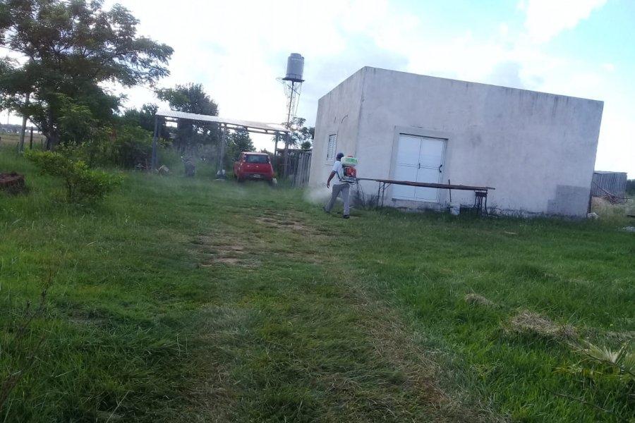 Bloqueo vectorial por casos de Dengue en Santo Tomé