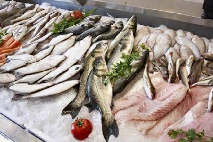 Pescaderías: Intentarán fijar precios hasta abril