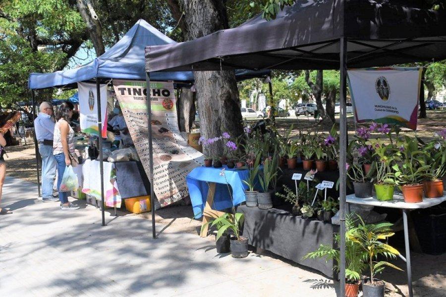 Las Ferias de la Ciudad visitarán esta semana los barrios San Gerónimo, 17 de Agosto y Santa María
