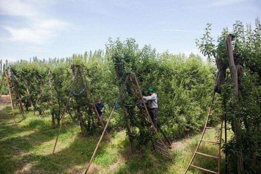 Renatre amplía su cobertura de prestaciones por desempleo a más trabajadores rurales