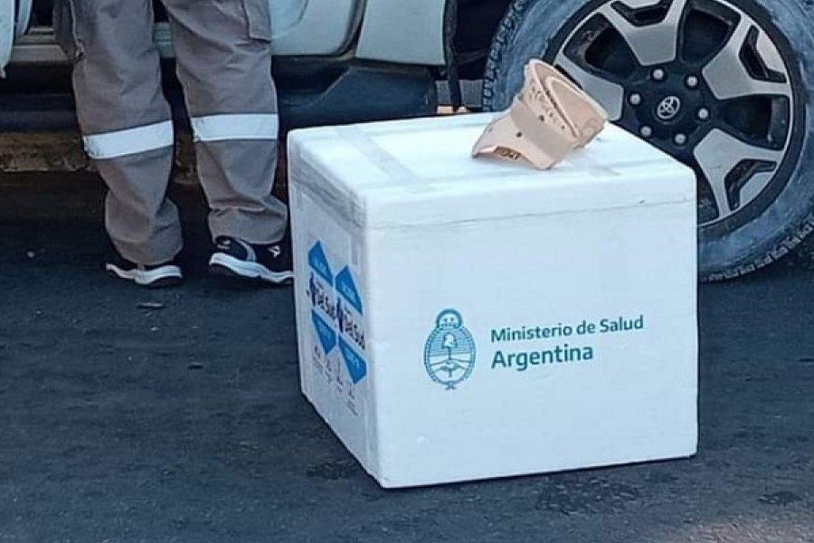 Gobierno de Corrientes dijo que es garantía que funcionarios trasladen vacunas