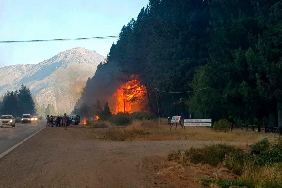 Los investigadores encontraron dos puntos de origen de los incendios en Chubut y Río Negro
