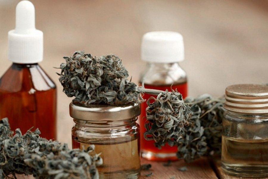 El Gobierno reglamentó el registro de autocultivo de cannabis medicinal