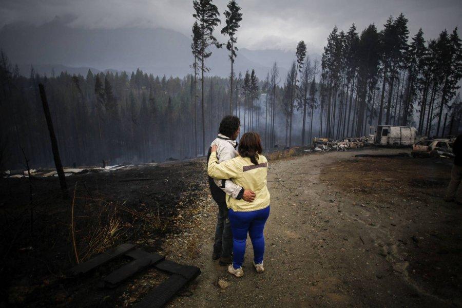 ANSES duplicará los pagos a los afectados por los incendios forestales