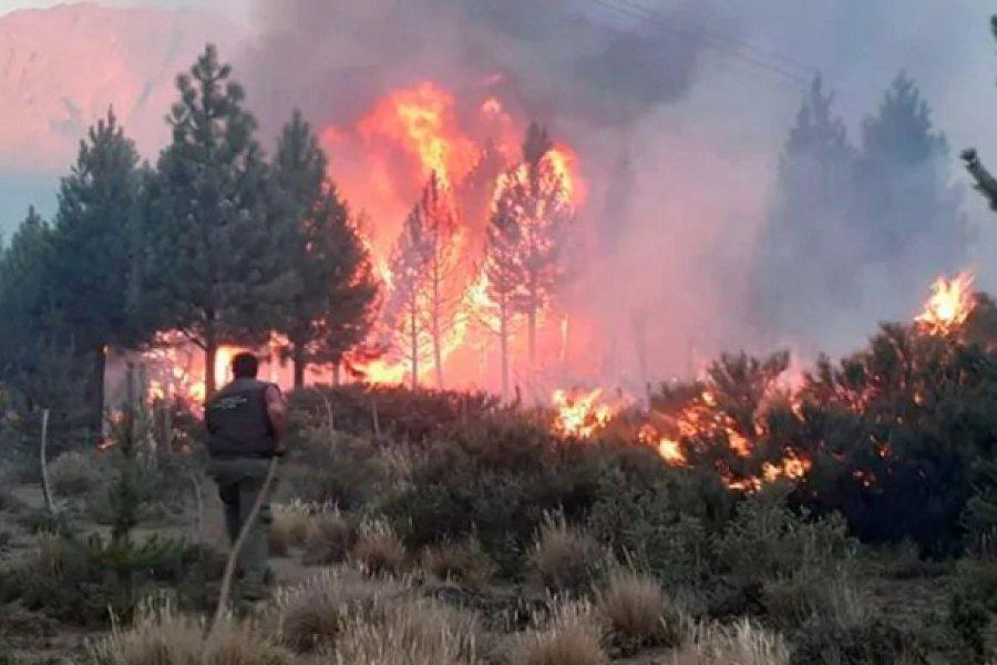 Oficializaron medidas de alivio fiscal para las zonas afectadas por los incendios en el sur