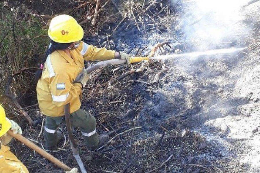 Diputados convirtió en ley la declaración de emergencia por los incendios en el sur