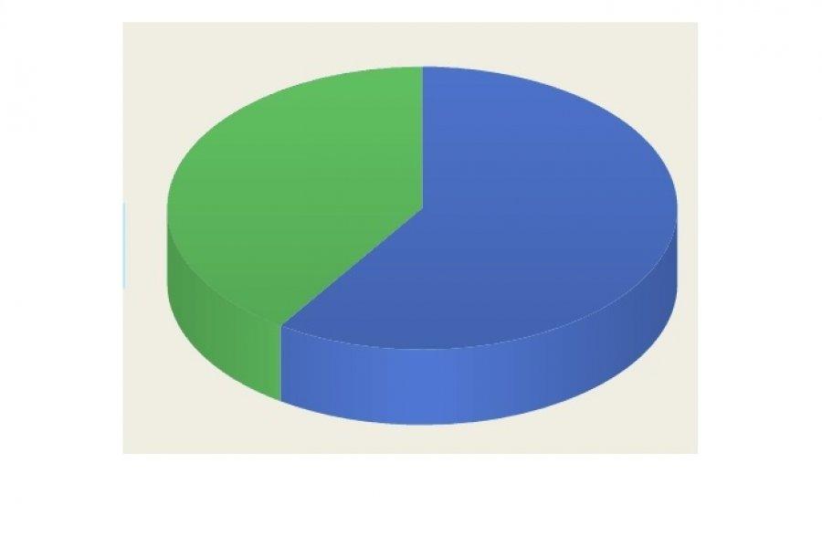 Encuesta CorrientesHoy: El 54% está de acuerdo con la liberación del  tránsito en el Puente