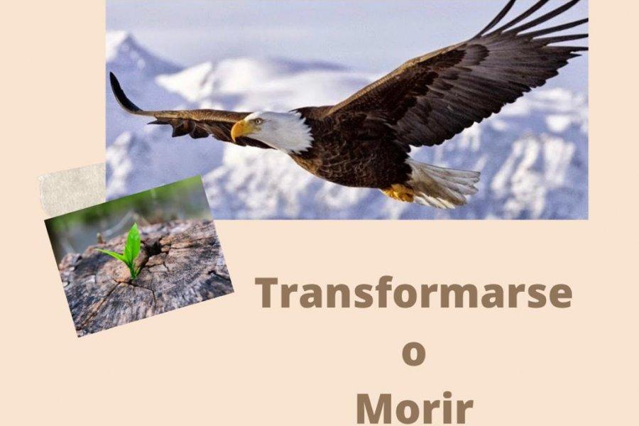 Transformarse o Morir