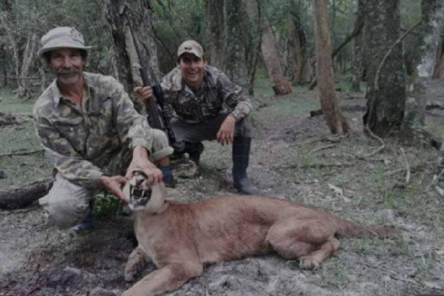La Justicia imputó al cazador que mató un puma y tenía 9 ciervos en cautiverio