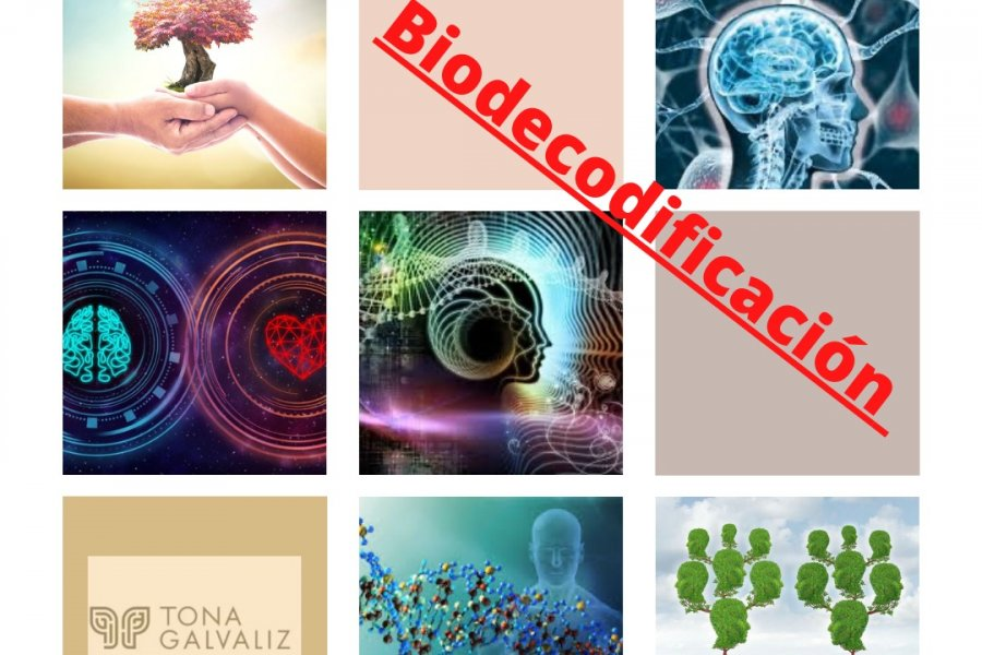 La Biodecodificación